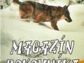 Magazín poľovníka 2017